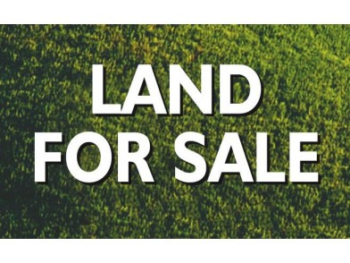 Rush Sale Land Property in Sta Cruz, Davao del Sur
