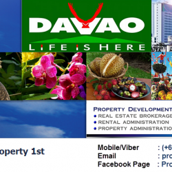 PROPERTY 1ST MARCH BANNER